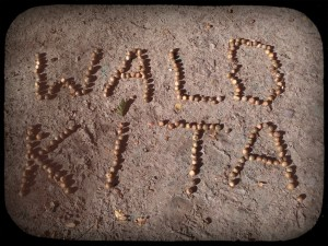 Waldkita