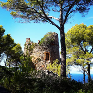 Mallorca Wachturm Torresa Pedrissa bei Deia