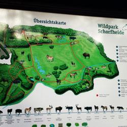 Rundweg im Wildpark Schorfheide