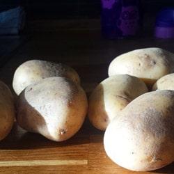 Gemüse-Kartoffel-Fleisch-Brei selber kochen