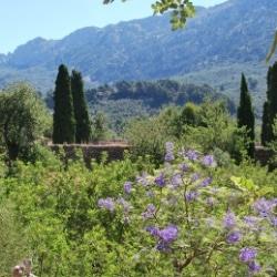Mallorca Urlaub auf dem Bauernhof