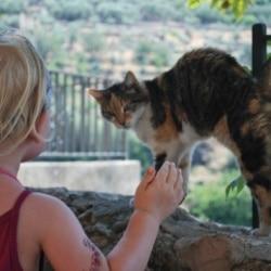 Mallorca Urlaub auf dem Bauernhof Agrotourismus