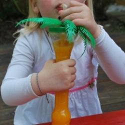 Orangensaft Fet a Sóller