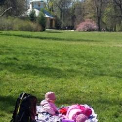 Picknick im Park Sanssouci