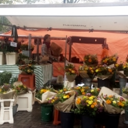 Markt im Stadtbezirk Jordaan in Amsterdam