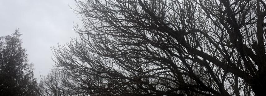 Graued Winterwochenende