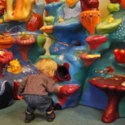 deutsches Meeresmuseum Ozeaneum in Stralsund