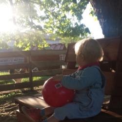 Bauernhof Urlaub