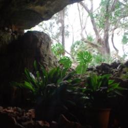 Ausblick aus der Drachenhöhle Mallorcas