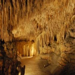 Ausflug mit Kindern in die Cuevas del Drach