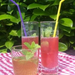 Getränke für den Sommer und die ganze Familie: Rhababarsaft und Holunderblürensaft