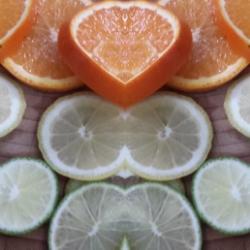Zitrusfrüchte für den Holunderblürensaft