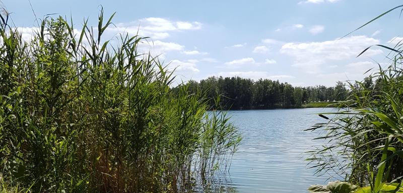 mit dem Wohnmobil zu Seen in Brandenburg