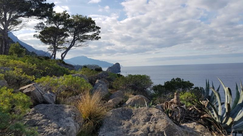 Ausblick an der Westküste Mallorcas