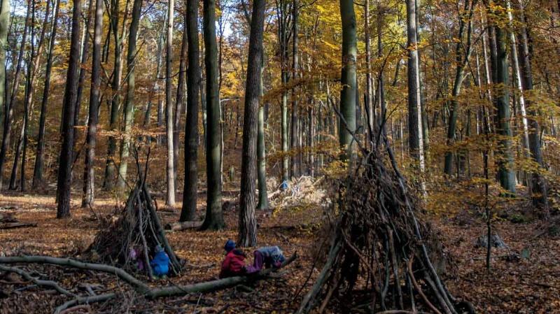 Tipis bauen im Wald, Foto: Till Budde