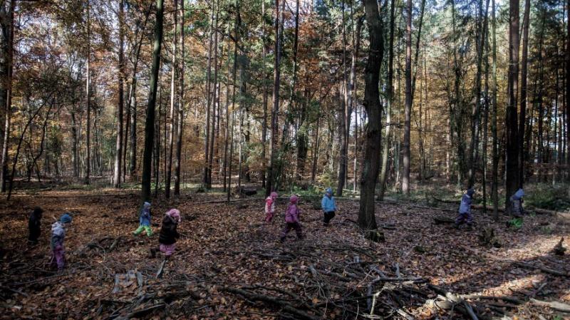 Natur entdecken, Foto: Till Budde