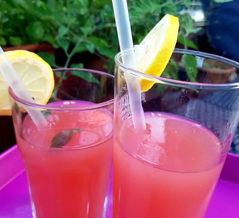 hausgemachte Melonen-Minz-Limonade, Rezept