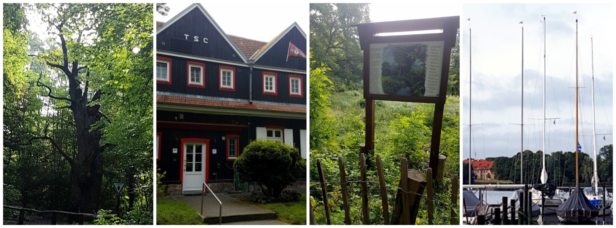 v.l.n.r.: Dicke Marie, Tegeler Segelclub, Feuchtwiese und Blick zur Halbinsel Reiherwerder und Villa Borsig