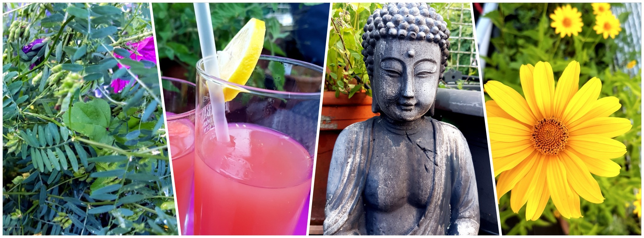 Sommergefühle mit selbst zubereiteter Limonade