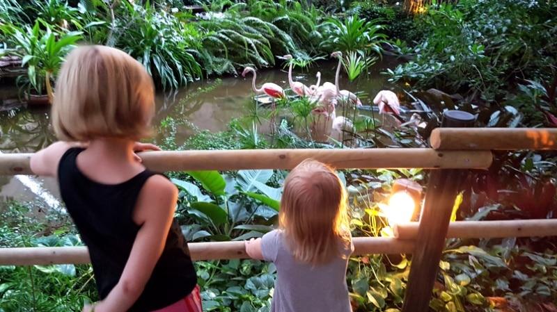 Tropical Island mit Kindern