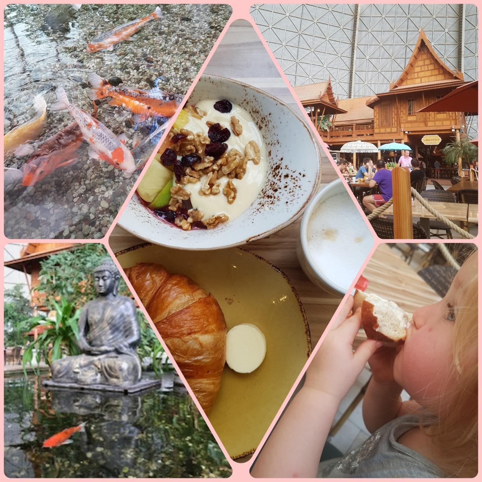 Frühstücken im Tropenparadies