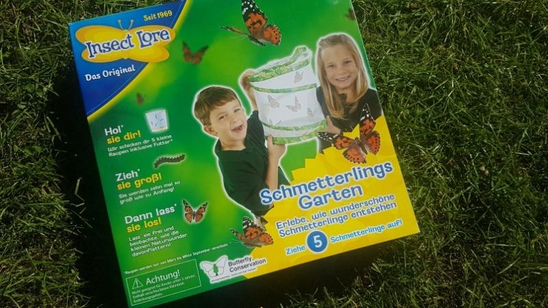 Schmetterlingsgarten, Raupen, Garten, Natur, Insekten