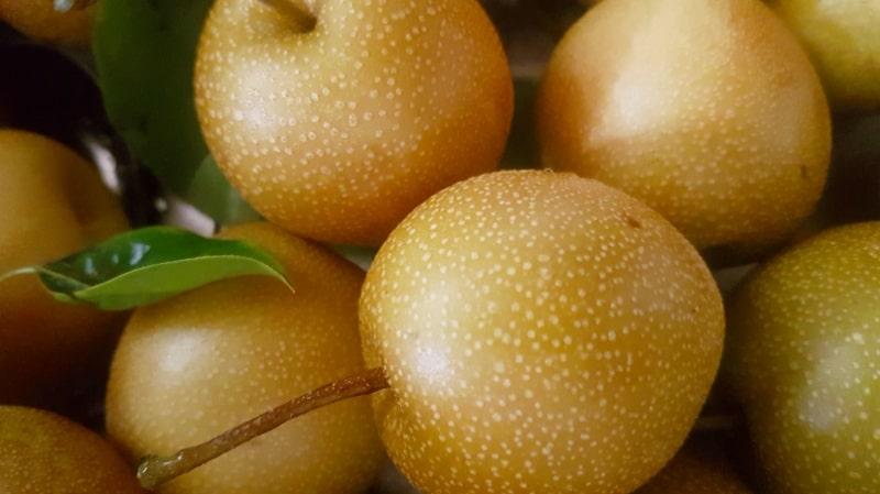 Nashibirne, Birne, Nashi, Kuchen, backen, Chutney, Einkochen, Kochrezepte, Garten, Ernte, selber machen
