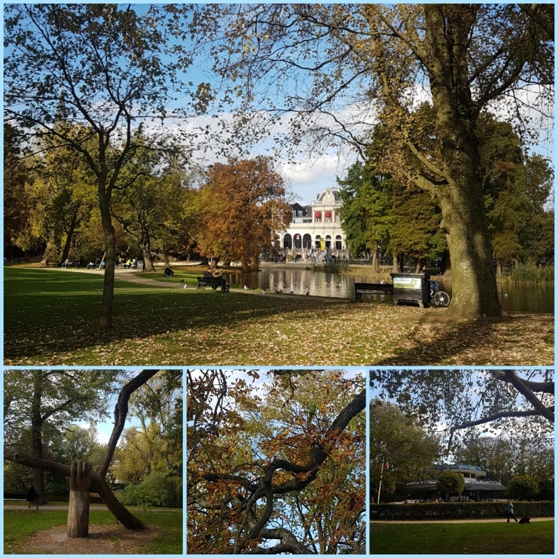 Amsterdam, Holland, Netherlands, Vondelpark, Stadtpark, Halsbandsittch, Spazieren in Amsterdam, reisen mit Kindern, Citytrip, reisen