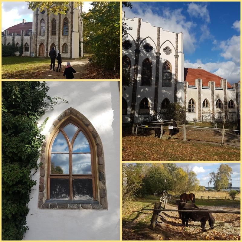 Pfaueninsel, Wannsee, Berlin, Havel, Düppeler Forst, Deutschland, reisen mit Kindern, Ausflugstip, Ausflug mit Kindern, Pfau, Meierei