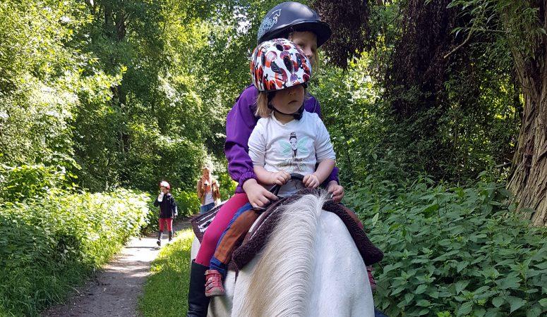 Pferde, Pferd, Reittherapie, Voltigieren, Berlin, Brandenburg, Kinder, Reiten