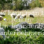 Was kann man im Mai in Berlin-Brandenburg unternehmen?