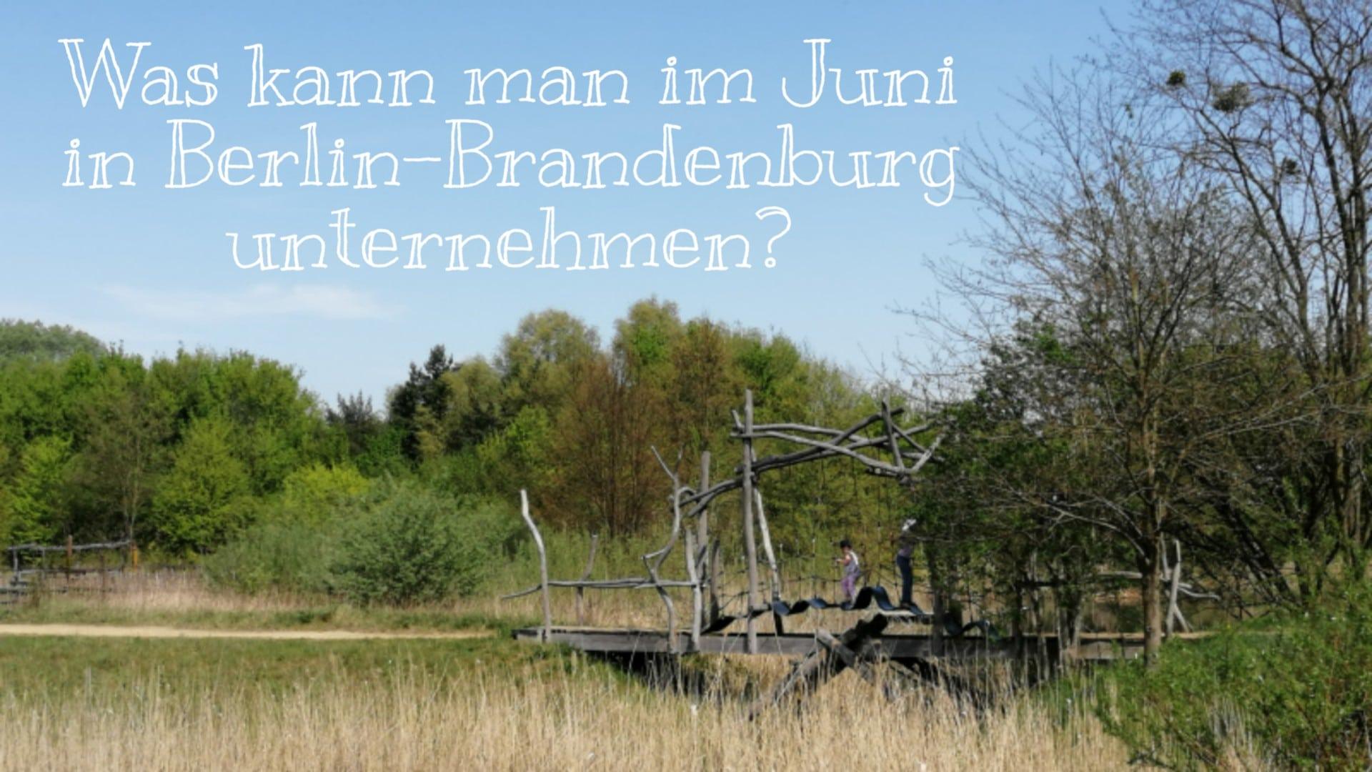 Juni, Veranstaltungen, Familien, Events, Kinder, Berlin, Brandenburg, Bio, Termine, Natur, Tiere, Pferde