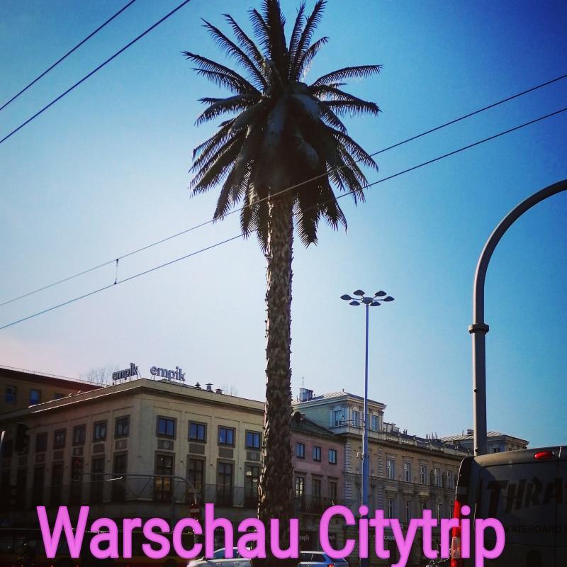 Warschau, Warsaw, Polen, Poland, Citytrip, Reisen, Urlaub, Ferien, Stadt, Wochenendtrip, verreisen, Palm, Palme Art