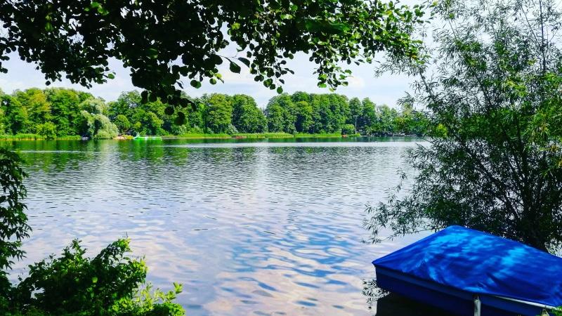 Motorboot, Boot, Schiff, Schifffahrt, See, Havel, Berlin, auf dem Wasser unterwegs, Ausflugstipp, Ausflug, motorbootfahren, Urlaub, Ferien, Sommer, Reinickendorf, Heiligensee